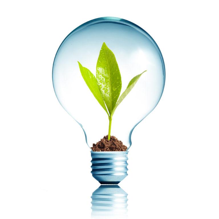 Lightbulb light-shutterstock_107156771