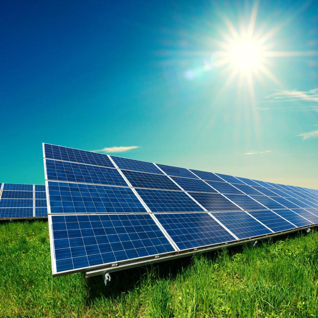 soloar panels on grass-shutterstock_1026962548-min
