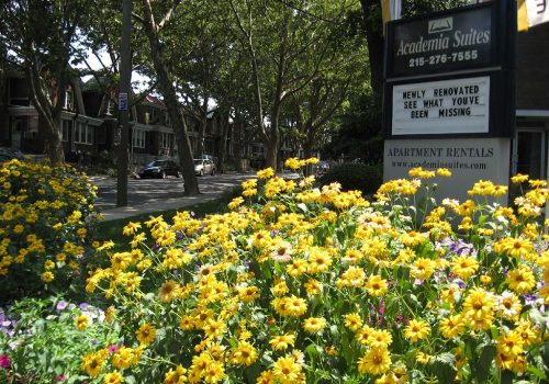 A garden with yellow flowers at Academia Suites apartments for rent