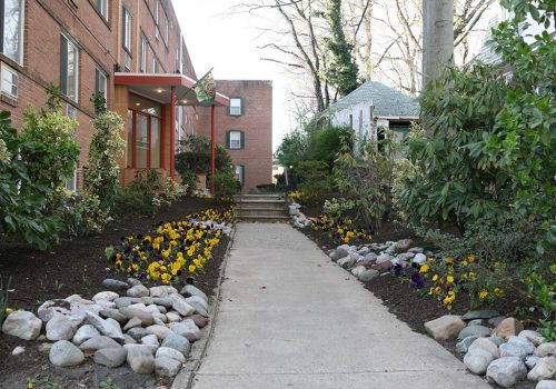 Entrance to a residential building at Eola Park apartments for rent surrounded by yellow and purple flowers