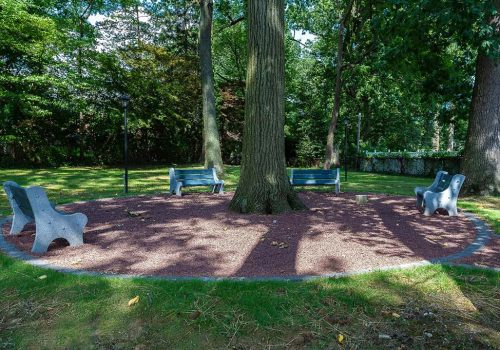 Outdoor bench seating area surrounding a tree at Eola Park apartments for rent in Philadelphia, PA
